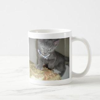 Kitten Basic White Mug
