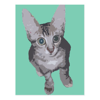 Kitten Big Eyes Pop Art Postcard