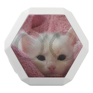 kitten white boombot rex bluetooth speaker