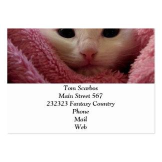 kitten chubby business cards