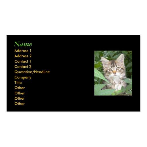 Kitten Business Cards