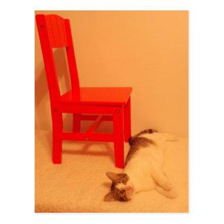 kitten by chair postcard