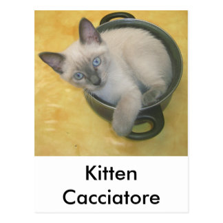 Kitten Cacciatore Postcard
