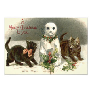 Kitten Cat Curious Snowman Holly Wreath Art Photo