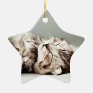 kitten, cat, cute tabby cat, cute cats, cute kitte christmas ornament