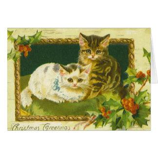Kitten Christmas Greetings Card