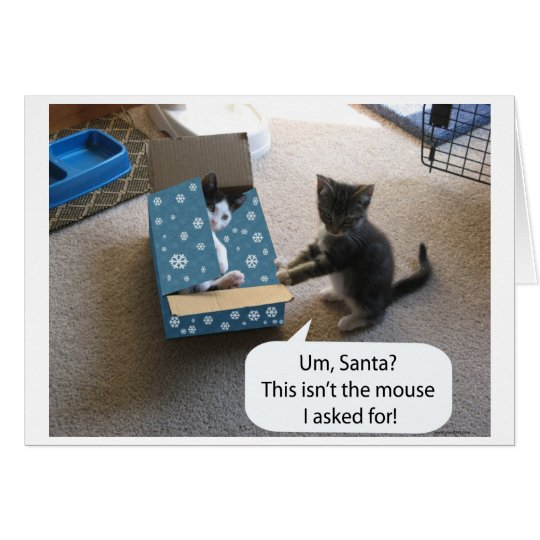 Kitten Christmas Surprise (blank inside) card