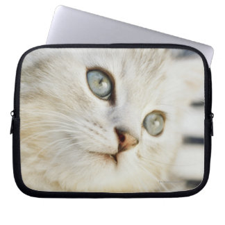 Kitten, close-up 2 laptop sleeve