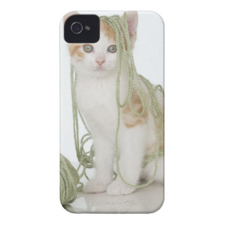 Kitten covered in yarn Case-Mate iPhone 4 case