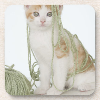 Kitten covered in yarn coaster
