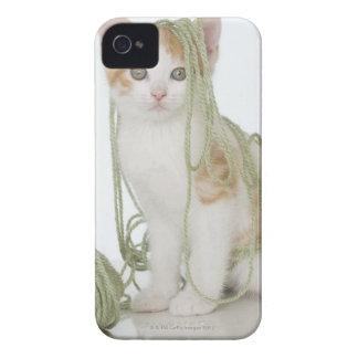Kitten covered in yarn iPhone 4 case