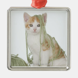 Kitten covered in yarn Silver-Colored square decoration