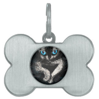 Kitten Cute Cat Pet Pet Tag