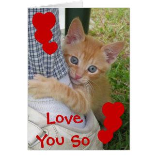 Kitten Dax Love Card