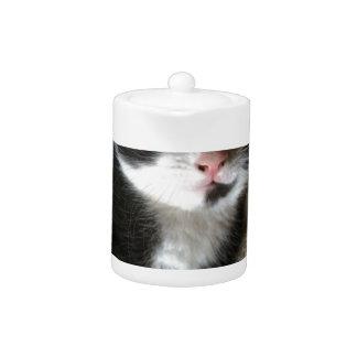 Kitten decal