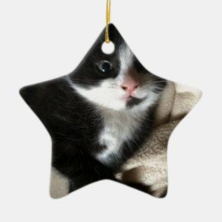 Kitten decal ceramic star decoration