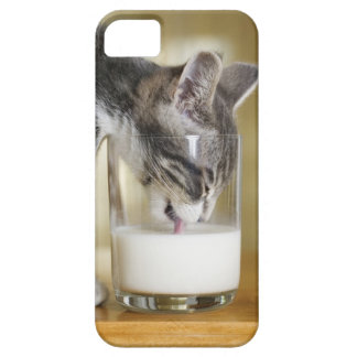 Kitten drinking milk from glass barely there iPhone 5 case