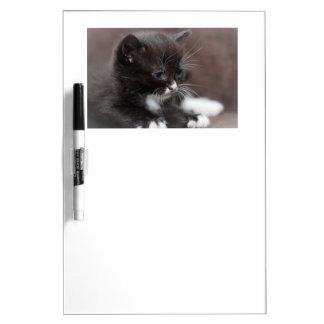 Kitten Dry wipe board