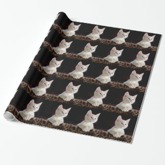 KITTEN: ENTRANCING MOMENT ~ WRAPPING PAPER