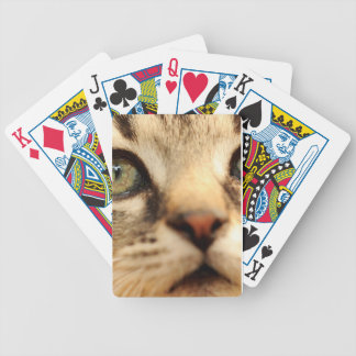 Kitten face bicycle playing cards