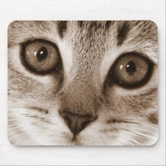 Kitten Face Mouse Pad
