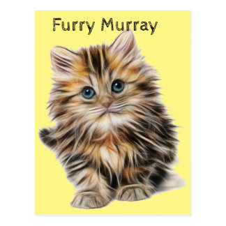 Kitten Furry Murray So Cute and Hairy Postcard