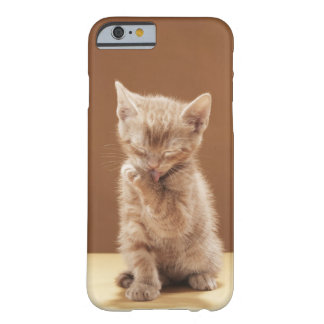Kitten grooming barely there iPhone 6 case