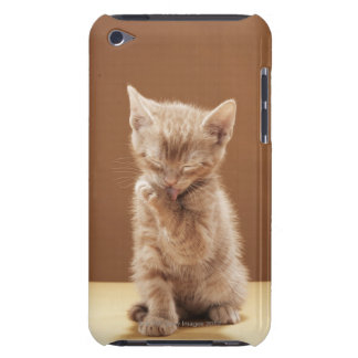 Kitten grooming barely there iPod cover