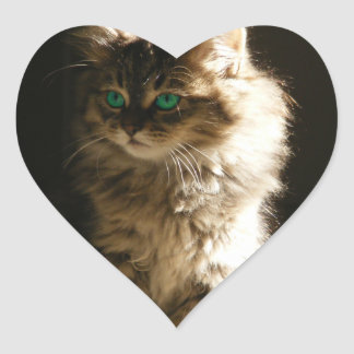 Kitten Heart Sticker