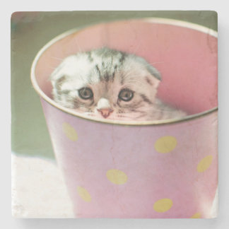 Kitten hide in candy bucket. stone beverage coaster