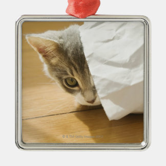 Kitten hiding in paper bag christmas ornament