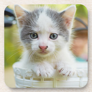 Kitten In A Basket On A Bicycle Beverage Coasters