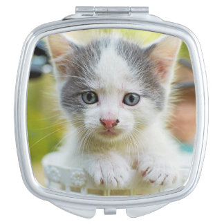 Kitten In A Basket On A Bicycle Compact Mirror