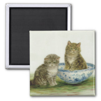 Kitten in a Blue China Bowl Square Magnet
