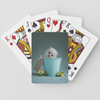 Kitten in a Bucket Playing Cards