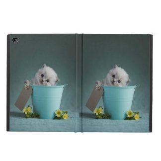 Kitten in a Bucket Powis iPad Air 2 Case