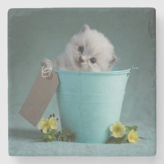 Kitten in a Bucket Stone Coaster