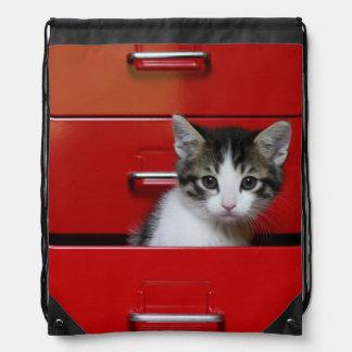 Kitten in a red drawer drawstring bag