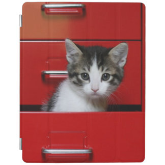 Kitten in a red drawer iPad cover