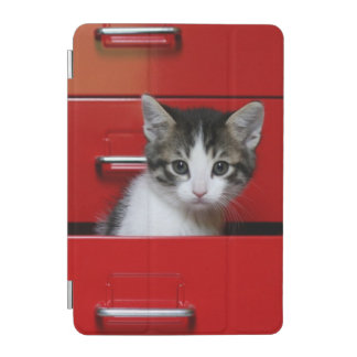 Kitten in a red drawer iPad mini cover