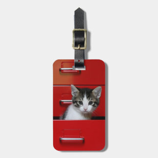 Kitten in a red drawer luggage tag
