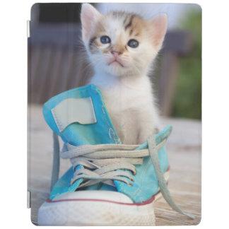 Kitten In A Shoe iPad Cover