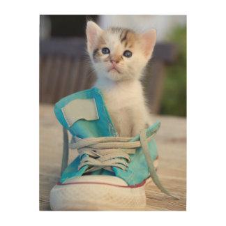Kitten In A Shoe Wood Wall Decor