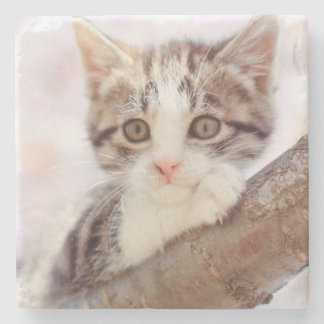 Kitten In A Tree Stone Coaster
