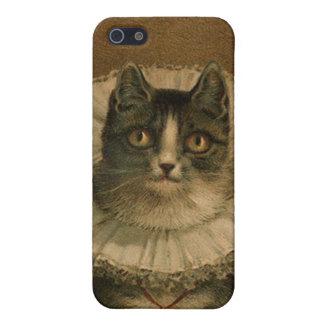 Kitten in an Elizabethan ruff Case For The iPhone 5