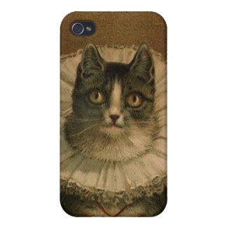 Kitten in an Elizabethan ruff Cases For iPhone 4