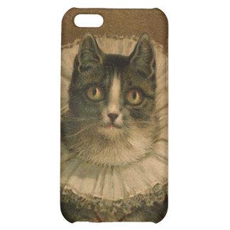 Kitten in an Elizabethan ruff iPhone 5C Cases