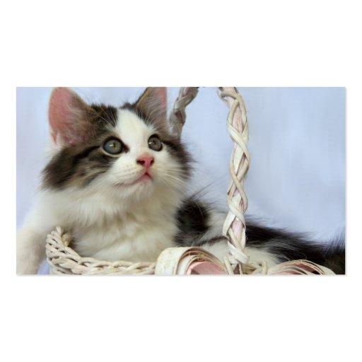 Kitten in Basket Business Cards