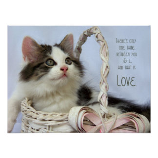 Kitten in Basket Love Fine Art Print