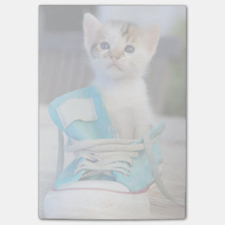 Kitten In Blue Shoe Post-it® Notes